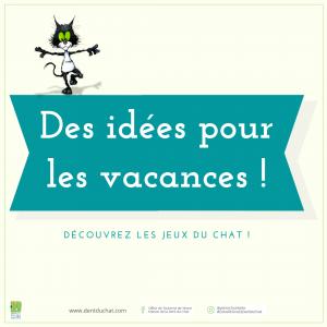 Visuel web idées jeux du chat - Vacances